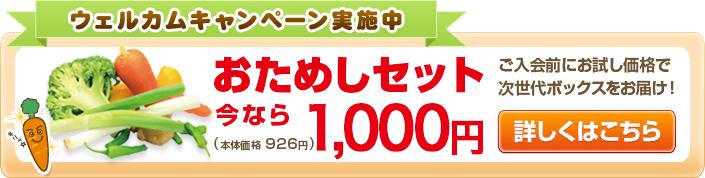 ウェルカムキャンペーン実施中 おためしセット ¥2,376(本体価格¥2,200) ご入会前にお試し価格で次世代ボックスをお届け!